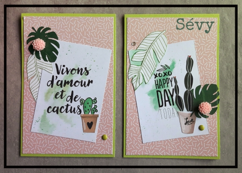 scrap, cartes, cactus, en voiture simone